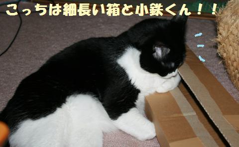 009_convert_20120512222423.jpg