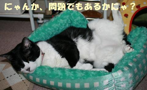 010_convert_20120616221659.jpg