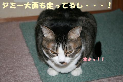 014_convert_20120329230258.jpg
