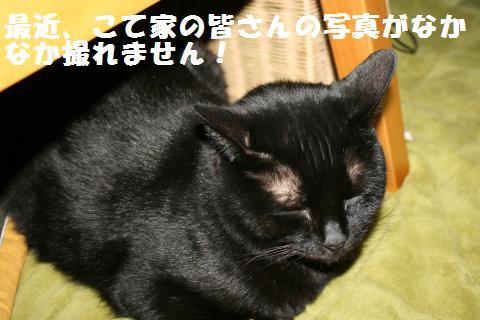 017_convert_20121216230032.jpg