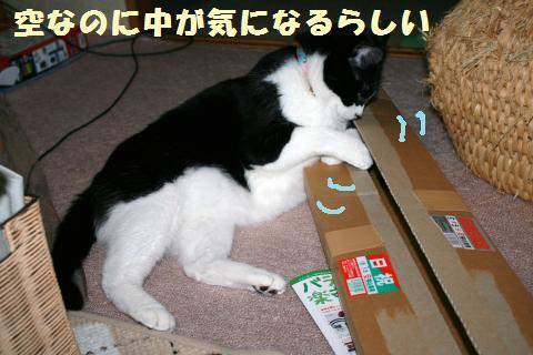 018_convert_20120512222514.jpg
