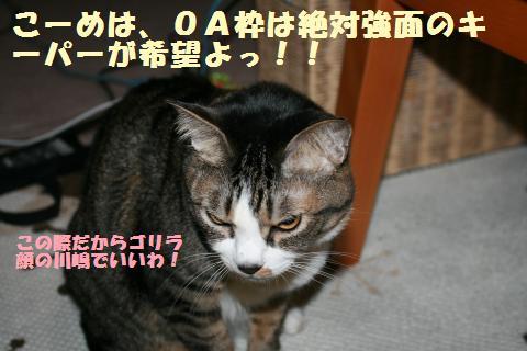 019_convert_20120329230407.jpg