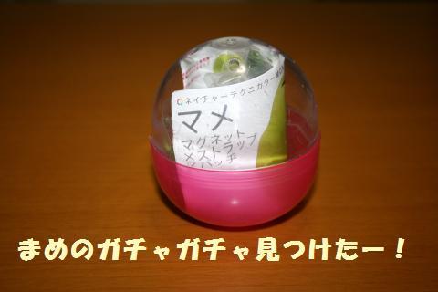 020_convert_20121012234325.jpg