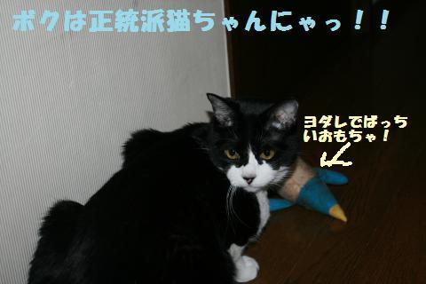 021_convert_20120520212626.jpg
