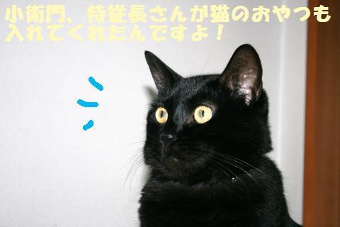 022_convert_20121118210152.jpg