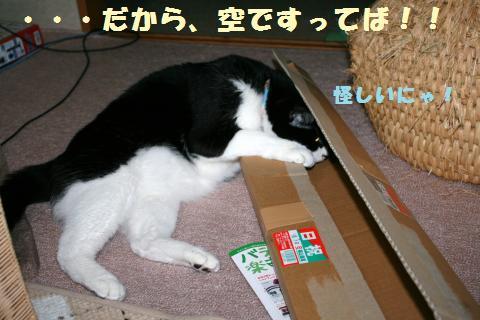 023_convert_20120512222648.jpg