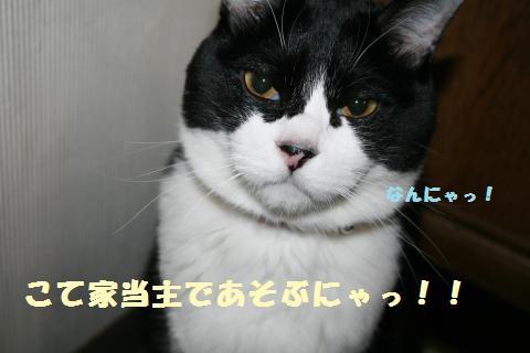 024_convert_20120321225800.jpg
