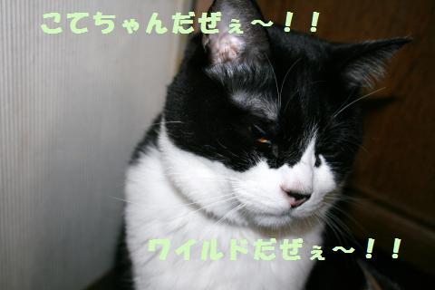 025_convert_20120321225846.jpg