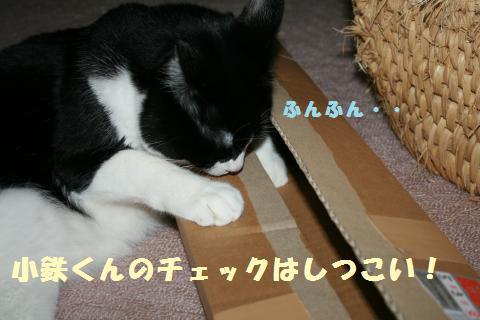028_convert_20120512222810.jpg