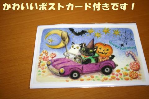 028_convert_20121012234649.jpg