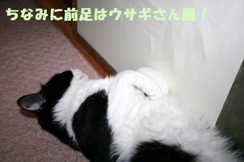 029_convert_20120703182525.jpg