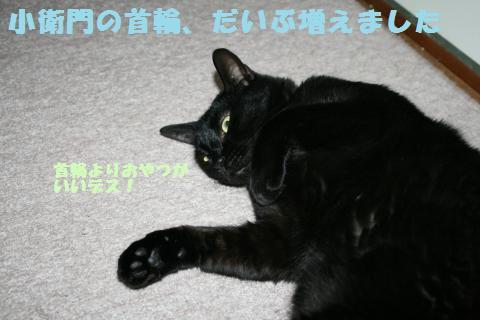 030_convert_20121012234811.jpg