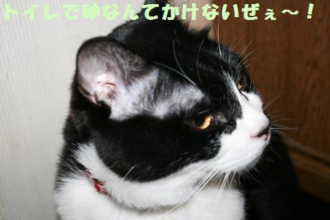 032_convert_20120321230205.jpg