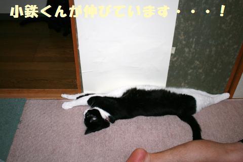 032_convert_20120622215006.jpg