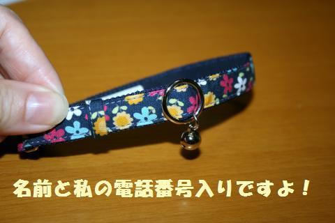 034_convert_20121012234859.jpg
