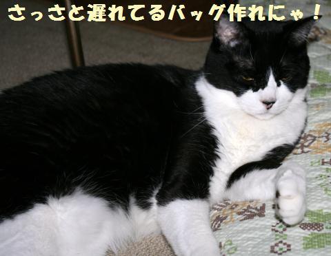 037_convert_20120924165224.jpg