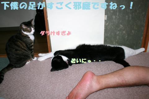 038_convert_20120622215158.jpg