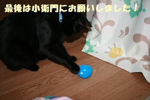 068_convert_20120517202255.jpg