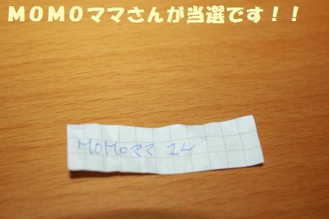 071_convert_20120517202444.jpg