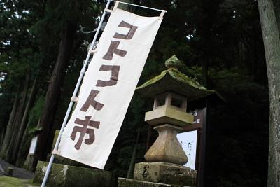 kotokoto-10-1MG.jpg