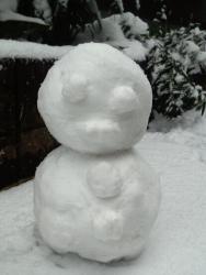 雪の日 009