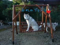 030_20101002003843.jpg