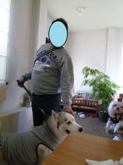 036_20101204222153.jpg