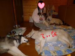 118_20100724112455.jpg