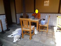 135_20101106001249.jpg