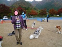 139_20101118224141.jpg