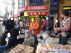 251_20101211215906.jpg