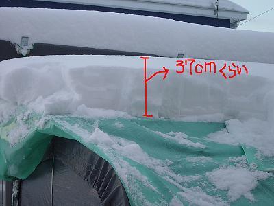 雪30センチ