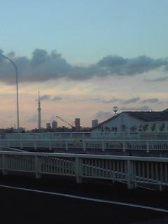 江戸川の端