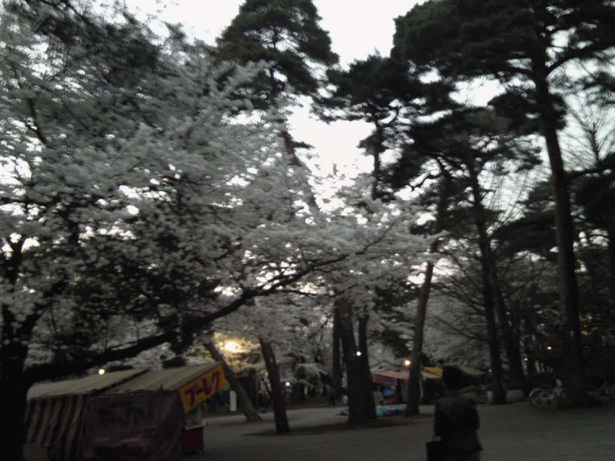 大宮公園2011_04#4
