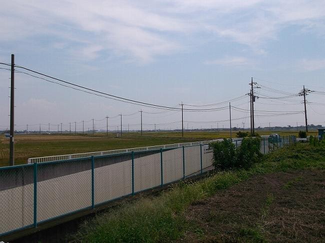 橋を抜けた先、さすが田舎埼玉