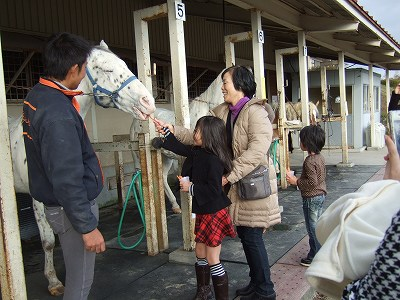 馬に餌を1