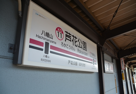 芦花公園1 (15)_R