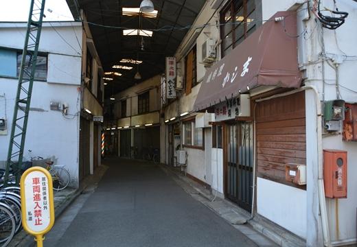 芦花公園2 (25)_R