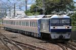 DSC_4887-2012-6-10.jpg