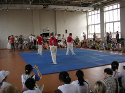 2010おじさんの中国ゴマ