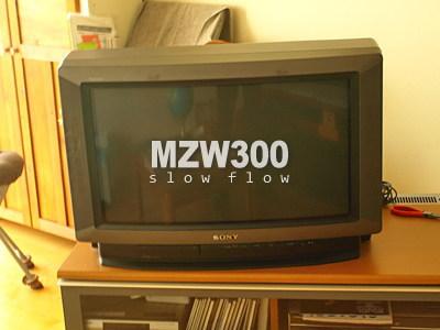 1010mzw02