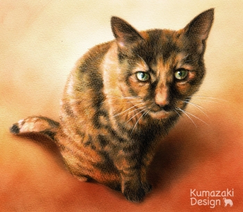 ペット肖像画 ペットの絵 ペット画 似顔絵 イラスト 猫 ネコ ねこ 色えんぴつ画 色鉛筆画