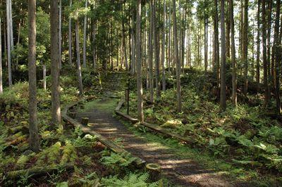 松畑茶屋跡