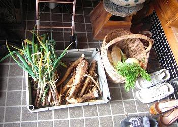 自家製野菜とおばけごぼう