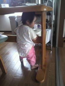 がくちょうのたわごと ~熊野吹奏楽団~-2010091509290000.jpg