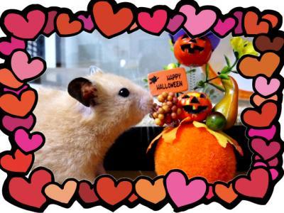 日記7・8かぼちゃ半年3