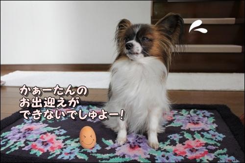 009kuramoka1_20110607162003.jpg