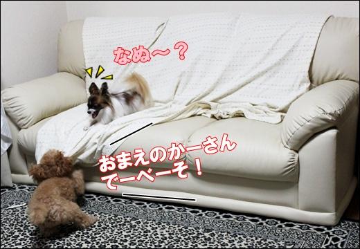025_20110913094021.jpg