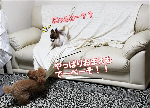 026_20110913094021.jpg
