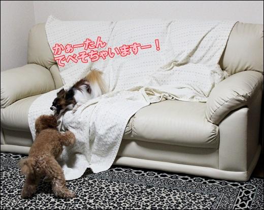 037_20110913094020.jpg